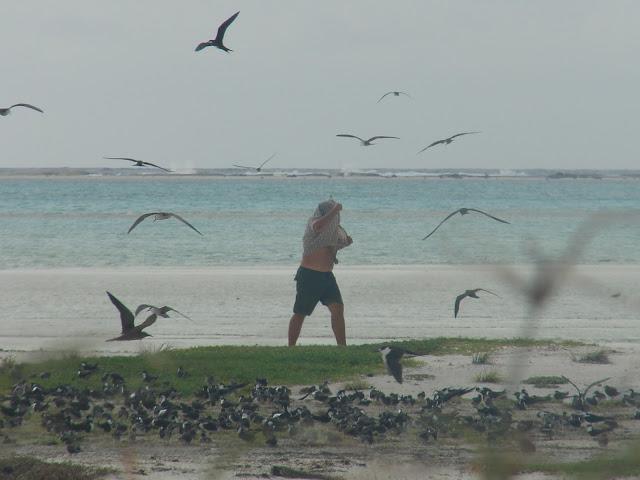 Patrick sensualizando com as aves do Atol das Rocas