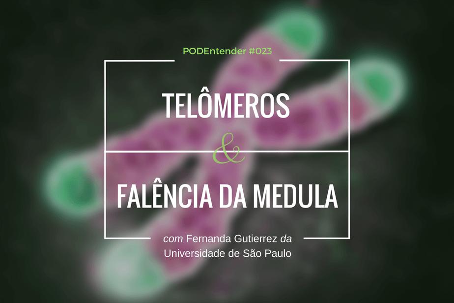 Sobre telômeros e falência da medula óssea
